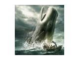 китобойцы  Просмотров: 261 Комментариев: 0