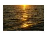 Название: Фото 2 Фотоальбом: Разное Категория: Природа Фотограф: коляшка  Просмотров: 600 Комментариев: 0