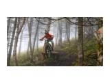downhill biker  3