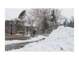 снег  Просмотров: 112 Комментариев: 1