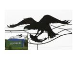 Неизвестная птица на стеле при въезде в Долинск  Просмотров: 1597 Комментариев: 3