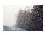 Зимняя сказка.. декабрь.. Фотограф: vikirin  Просмотров: 1420 Комментариев: 0
