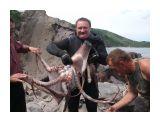 Поймал тут осьминога на Курилах  Просмотров: 12332 Комментариев: 33