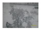 Принакрылась снегом...  Просмотров: 5555 Комментариев:
