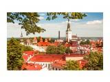 Вид на Таллин со смотровой площадки старого города