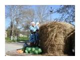 сельское хозяйство [1024x768]  Просмотров: 7027 Комментариев: