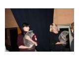 Название: IMG_4998 Фотоальбом: выставка кошек 29.11.2009 Категория: Животные  Время съемки/редактирования: 2009:11:29 16:42:55 Фотокамера: Canon - Canon EOS 1000D Диафрагма: f/5.0 Выдержка: 1/60 Фокусное расстояние: 40/1 Светочуствительность: 400   Просмотров: 386 Комментариев: 0