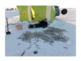 Название: P61221-163157 Фотоальбом: рыбалка Категория: Рыбалка, охота  Время съемки/редактирования: 2016:12:21 16:31:58 Фотокамера: Meizu - m3 note Диафрагма: f/2.2 Выдержка: 5301/1000000 Фокусное расстояние: 350/100    Просмотров: 418 Комментариев: 0