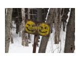 Название: IMG_4615 Фотоальбом: Зимний лес Категория: Разное Фотограф: Region_65  Время съемки/редактирования: 2013:02:06 17:58:28 Фотокамера: Canon - Canon EOS 50D Диафрагма: f/8.0 Выдержка: 1/160 Фокусное расстояние: 105/1    Просмотров: 1184 Комментариев: 0