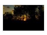 Название: _MG_5479 Фотоальбом: Разное Категория: Природа Фотограф: vit781  Время съемки/редактирования: 2017:10:16 21:42:16 Фотокамера: Canon - Canon EOS 1100D Диафрагма: f/22.0 Выдержка: 1/100 Фокусное расстояние: 33/1    Просмотров: 562 Комментариев: 0