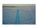 Зимой тени длинные... Фотограф: vikirin  Просмотров: 632 Комментариев: 0