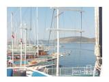 Название: Турция. Порт Бодрум. Яхты...яхты... Фотоальбом: vizit Категория: Туризм, путешествия Фотограф: Maren  Просмотров: 305 Комментариев: 0