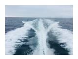 Название: C97CA285-29FF-4F20-8D12-A13A766F841A Фотоальбом: Рыбалка Категория: Море  Время съемки/редактирования: 2018:07:26 12:22:05 Фотокамера: Apple - iPhone 6s Диафрагма: f/2.2 Выдержка: 1/1183 Фокусное расстояние: 83/20    Просмотров: 187 Комментариев: 0