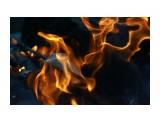 Физика огня... Фотограф: vikirin  Просмотров: 1770 Комментариев: 0