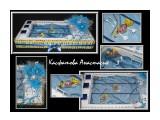 Подарок тренеру по плаванию длина 54см, ширина 32см. 1,1кг конфет Konafetto, а также конфеты КреАмо, Ангаже, Рафаэлло, Живинка, Шоколадная ночь и Fine Gold.  Просмотров: 5660 Комментариев: 0