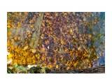 Название: Осень в воде Фотоальбом: Санкт-Петербург 2018 Категория: Туризм, путешествия  Время съемки/редактирования: 2018:10:28 18:48:08 Фотокамера: Canon - Canon EOS 7D Диафрагма: f/6.3 Выдержка: 1/20 Фокусное расстояние: 17/1    Просмотров: 235 Комментариев: 0