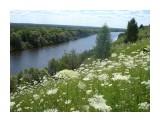 Луга вдоль Десны! Фотограф: viktorb  Просмотров: 708 Комментариев: 0