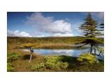 Озеро в сопках Фотограф: Mikhaylovich  Просмотров: 1956 Комментариев: 1