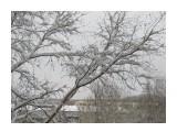 Название: 20 9 апреля Фотоальбом: А из нашего окна... Категория: Природа Фотограф: Лузи  Время съемки/редактирования: 2013:04:09 09:46:55 Фотокамера: Canon - Canon PowerShot SX130 IS Диафрагма: f/4.0 Выдержка: 1/250 Фокусное расстояние: 10678/1000    Просмотров: 1032 Комментариев: 0