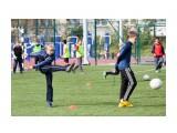 Название: IMG_4897 Фотоальбом: Чемпионат по футболу 8 школа Категория: Спорт  Просмотров: 291 Комментариев: 0