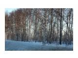 IMG_5467 Фотограф: vikirin  Просмотров: 693 Комментариев: 0