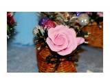 Название: IMG_9035 Фотоальбом: Новогодняя выставка 14.12.2013 Категория: Хобби  Просмотров: 510 Комментариев: 0