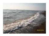 Море море мир бездомных:))  Просмотров: 3834 Комментариев: