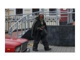 DSC02711 Фотограф: vikirin  Просмотров: 577 Комментариев: 0