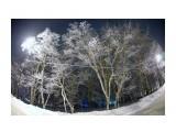 Метель Фотограф: В.Дейкин Кружится и хохочет   Метель под Новый год.  Снег опуститься хочет,  А ветер не дает.  И весело деревьям,  И каждому кусту,  Снежинки, как смешинки,  Танцуют на лету.  Просмотров: 1507 Комментариев: 0