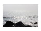 Море в тумане Фотограф: vikirin  Просмотров: 2425 Комментариев: 0
