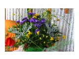 IMG_3951 Фотограф: vikirin  Просмотров: 371 Комментариев: 0