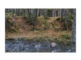 Название: DSC07289 Фотоальбом: Осень Категория: Природа Фотограф: VictorV  Время съемки/редактирования: 2020:10:28 22:46:38 Фотокамера: SONY - SLT-A99 Диафрагма: f/6.3 Выдержка: 1/50 Фокусное расстояние: 350/10    Просмотров: 115 Комментариев: 0