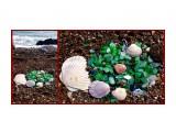 """MyCollages """"Шедевр"""" из стекла и ракушек на песке.  Просмотров: 115 Комментариев:"""