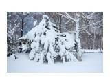 Название: _DSC4216 Фотоальбом: Зима... Категория: Пейзаж Фотограф: VictorV  Время съемки/редактирования: 2020:03:21 19:03:21 Фотокамера: SONY - DSLR-A900 Диафрагма: f/5.0 Выдержка: 1/4000 Фокусное расстояние: 900/10    Просмотров: 25 Комментариев: 0