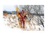 февраль на лыжах Фотограф: vikirin  Просмотров: 979 Комментариев: 0