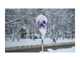 Название: _DSC4248 Фотоальбом: Зима... Категория: Пейзаж Фотограф: VictorV  Время съемки/редактирования: 2020:03:21 19:02:09 Фотокамера: SONY - DSLR-A900 Диафрагма: f/4.5 Выдержка: 1/4000 Фокусное расстояние: 1350/10    Просмотров: 30 Комментариев: 0