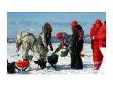 Название: похлёбка участников Фотоальбом: сахалинский лёд 2014 Категория: Сюжет  Просмотров: 1404 Комментариев: 0
