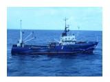 БАРС  (патрульное судно)   Фотограф: 7388PetVladVik  Просмотров: 6581 Комментариев: 2