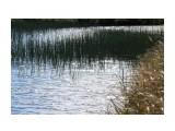 Озерцо в тундре.. Фотограф: vikirin  Просмотров: 2431 Комментариев: 0