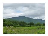 Небо в тучах!И лес грустен! Фотограф: viktorb  Просмотров: 799 Комментариев: 0