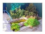 Пруд для карасиков. Фотограф: gadzila  Просмотров: 677 Комментариев: 0