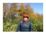 SAM_7701 И в осеннем лесу...  Просмотров: 8 Комментариев: