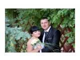 Свадьба Фотограф: gadzila  Просмотров: 1106 Комментариев: 0