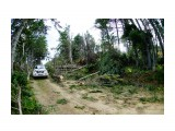 Дорога до р.Анна Фотограф: В.Дейкин после циклона октябрь 2015  Просмотров: 759 Комментариев: 0