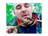 Всё стало ясно, ПОДЖЕРО надо ставить на гусеничный ход. Фотограф: фотохроник  Просмотров: 589 Комментариев: 0