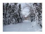 Снежный путь или тоннель? Фотограф: viktorb  Просмотров: 990 Комментариев: 0