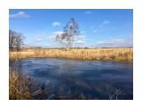 Озерцо покрыто льдом  Просмотров: 219 Комментариев: 0