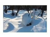 В снежной стране... Фотограф: vikirin  Просмотров: 2193 Комментариев: 0