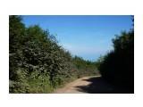 DSC07992 Фотограф: vikirin  Просмотров: 689 Комментариев: 0