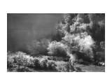 долина туристов Фотограф: Донов Владлен Сергеевич 1963 ,слёт туристов Южно-Сахалинска  Просмотров: 229 Комментариев: 0